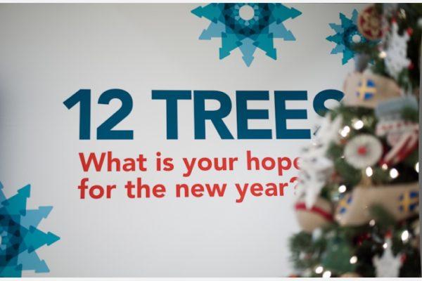 12trees2012-1