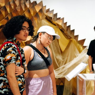 People looking at text for an artwork. A giant interactive durian art piece is in the background.