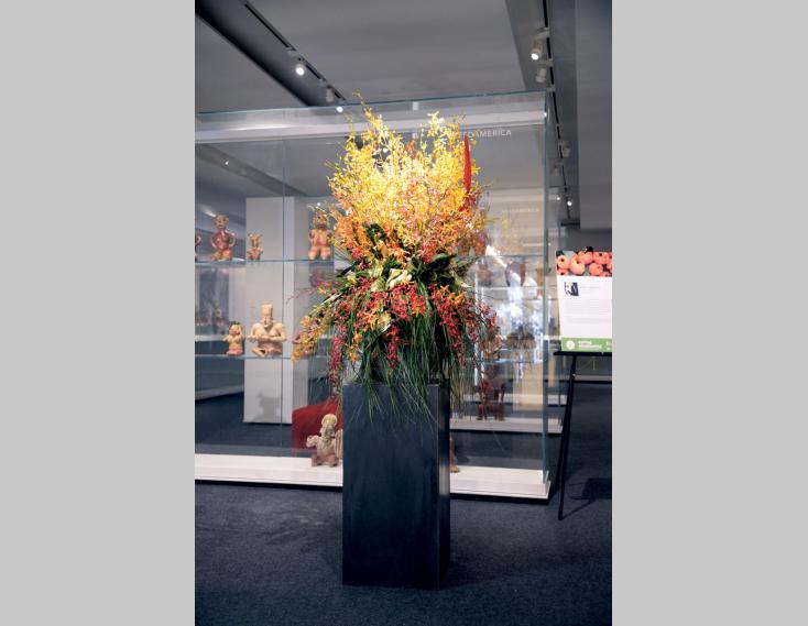 Spring Awakening: Gardiner In Bloom - Gardiner Museum