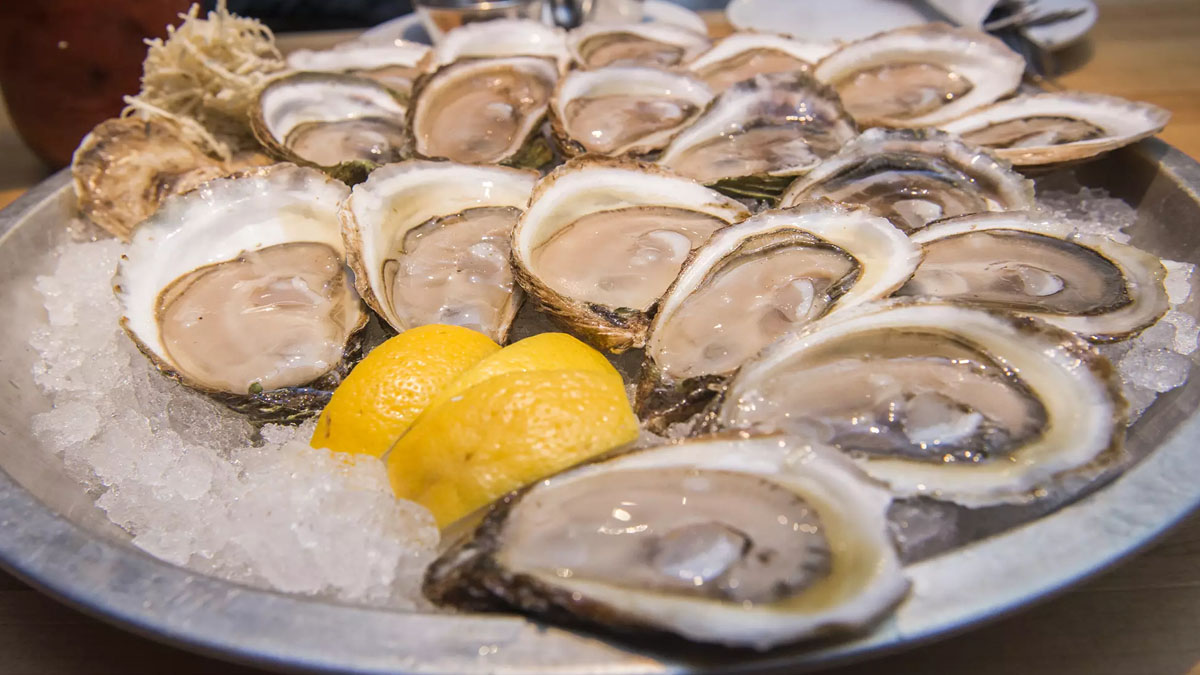 Oysters on ice with sliced lemon