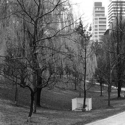 Black and white image of Queen's Park
